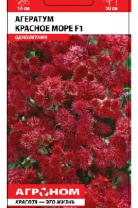 """Агератум """"Красное море F1"""" – однолетнее растение высотой 30 см"""