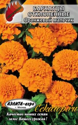 Семена бархатцев Оранжевый мальчик