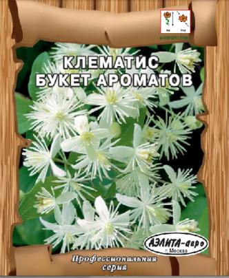 Клематис Букет ароматов