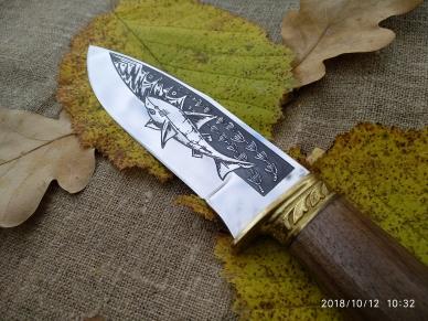 """Клинок ножа """"Акула-2"""" с рисунком морского хищника"""
