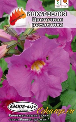 Семена инкарвелии цветочной