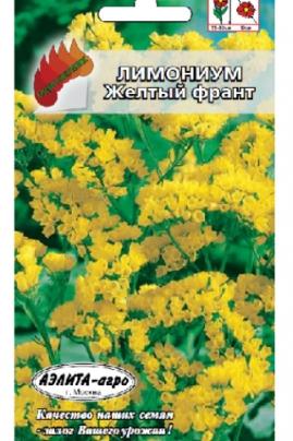Лимониум Желтый франт – яркие кустики высотой 55-60 см