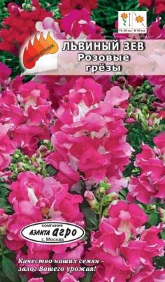 Львиный зев Розовые грезы