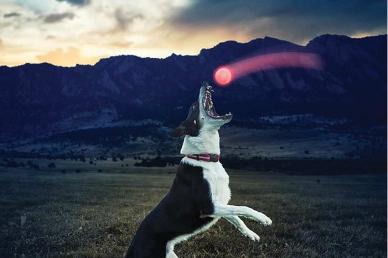 Светодиодный мяч для собак GlowStreak (red) Nite Ize
