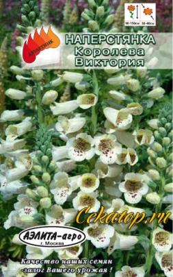 Семена наперстянки Королева Виктория
