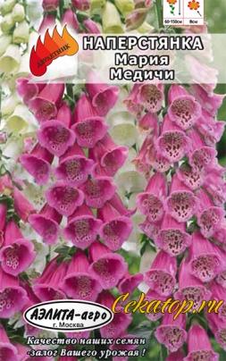 Наперстянка пурпурная Мария Медичи