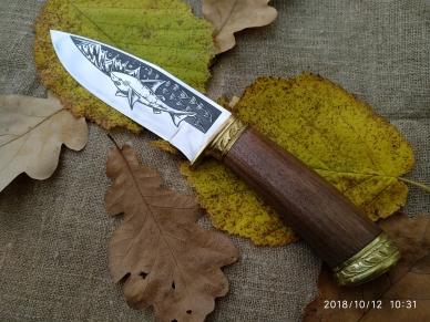 "Нож ""Акула-2"" с рукоятью из кавказского ореха"