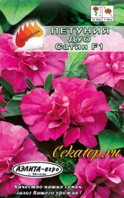 Крупноцветковая петуния Дуо Сатин махровая
