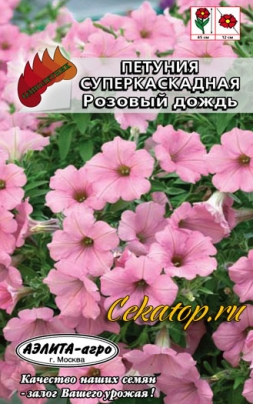 Петуния Суперкаскадная Розовый дождь