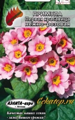 """Семена Примулы """"Первая Красавица нежно-розовая"""""""