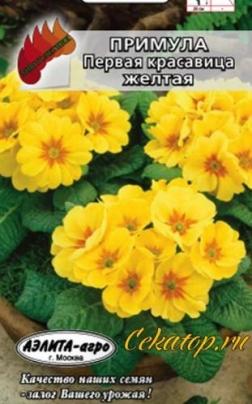 Семена Примулы Первой Красавицы Жёлтой