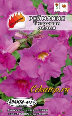 Семена реймании Тигровая лилия
