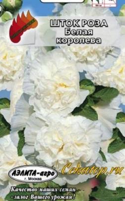 "Семена шток-розы ""Белая Королева"""