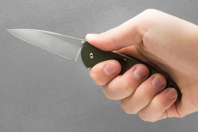 Складной нож Leek Olive Drab (сталь 14C28N) Kershaw