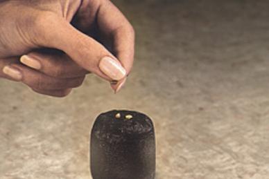 Таблетки торфяные для проращивания семян