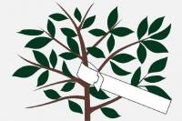 Бирка (ярлык) для маркировки саженцев