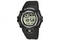 Часы G-Shock G-2900F-8V Casio
