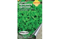 Салат «Кучерявец Одесский», семена
