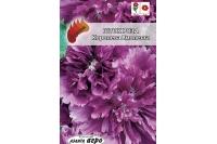 Шток-роза Королева Виолетта фиолетовая