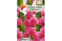 Шток-роза Ньюпорт розовая