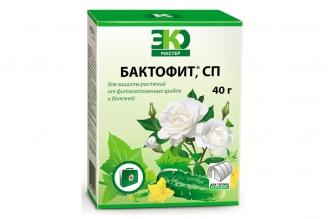 Препарат Бактофит