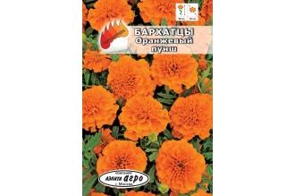 Бархатцы Оранжевый пунш