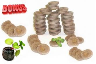 Бонус-пак: кокосовые таблетки Jiffy-7C 45 мм в количестве 200 шт. по спец. цене!