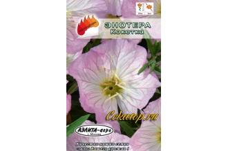 Энотера розовая Кокетка