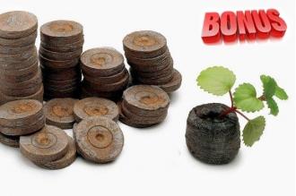 Бонус-пак: кокосовые таблетки Jiffy-7C 35 мм в количестве 200 шт. по спец. цене