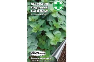 Майоран садовый «Байкал» семена