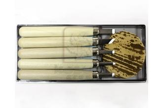 Набор для резьбы по дереву из 5 предметов Ikeuti
