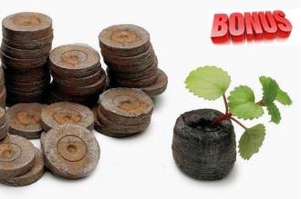 Торфяные таблетки Jiffy-7 диаметр 33 мм в количестве 100 штук