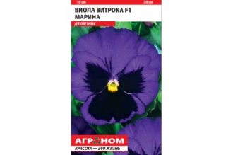 Виола Витрока F1 Марина – двухлетний сорт с крупными цветками