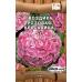 Гвоздика Розовая Красавица