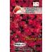 Семена цветов Обриета красная Дебора